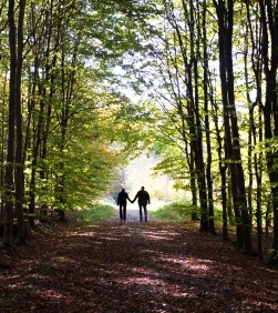 Boy and girl walking hand in hand, reaching the end of the forest.