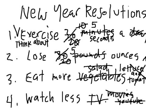 resolutions-2011snip
